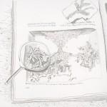 http://sebastiangerstengarbe.com/files/gimgs/th-1_Ausdruck-Haeftlingspalme-2013-Bleistift-46x54cm.jpg